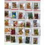 Coleção De Sementes De Pimenta 25 Espécies + 10 Brindes