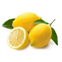 Muda De Limão Siciliano - Bh Mudas - Confira!!!
