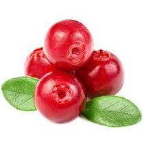 Sementes De Cranberry Importada!