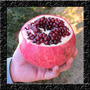 Romã Gigante Turkey Pomegranate Sementes Fruta P/ Mudas