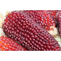 Milho Morango - Strawberry Popcorn - Sementes Para Mudas