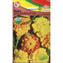 Sementes Tagete Sortida Anã Cravo Da India Isla Pack C 0,30g