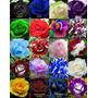 100 Sementes De Rosas Exóticas 20 Cores Diferente(5 De Cada)