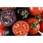 30 Sementes De Tomate Cereja (preto ,roxo,vermelho)