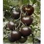 Sementes De Tomate Cereja Preto