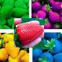 20 Sementes De Morango Colorido Para Mudas - Envio Grátis
