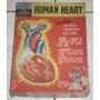 Human Heart - Estudar, Montar E Brincar - Anos 70 - Importa
