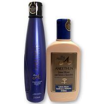 Aneethun Linha A Shampoo + Creme Silicone - Profissional