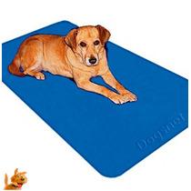 Cobertor Térmico Cachorros/gatos - 110v - 60cm X 60 Cm