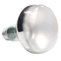 Lampada Spot G&e R80 Espelhada 60 W Rosca E27 127v