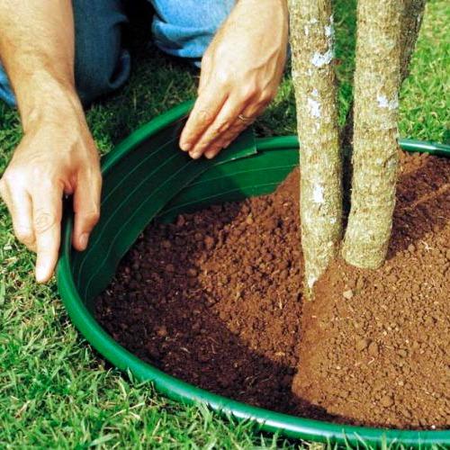 Manuten o de solos de grama pictures to pin on pinterest for Separadores de jardin