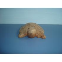 Linda Escultura De Tartaruga Em Madeira Assinada