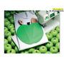 Máquina Costura Doméstica Elna Sew Green 1000 Frete Grátis