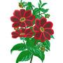 Coleção Bordados Floral - Mais De 10.000 Em Dvd Ou Download