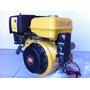 Motor Estacionário Gasolina Sp188fe 13hp Shanghai Amazonas