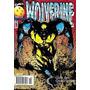 Wolverine 50 - Edição Especial Comemorativa!