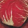Sementes Isla, Almeirão Cabeça Vermelha+cenoura Frete Gratis
