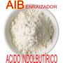 Pó Enraizador Aib Acido Indolbutírico 4000 Ppm 50gr Orquídea