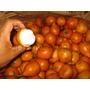 Achachairu Boliviano 01 Fruta In-natura Apenas R$ 2,90