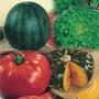 Sementes De Hortaliças - A Sua Escolha - Kit 40 Variedades