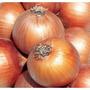Sementes De Cebola Onion Crioula Para Cultura Orgânica