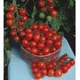 Sementes Lindo Tomate Cereja Samambaia P/ Vaso Frete Gratis