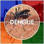 Crotalaria Breviflora A Melhor Contra A Dengue 500 Sementes