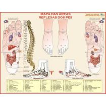 Mapa Da Reflexologia Dos Pés Gigante - 1,20 X 0,90m