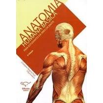 Anatomia Humana Basica