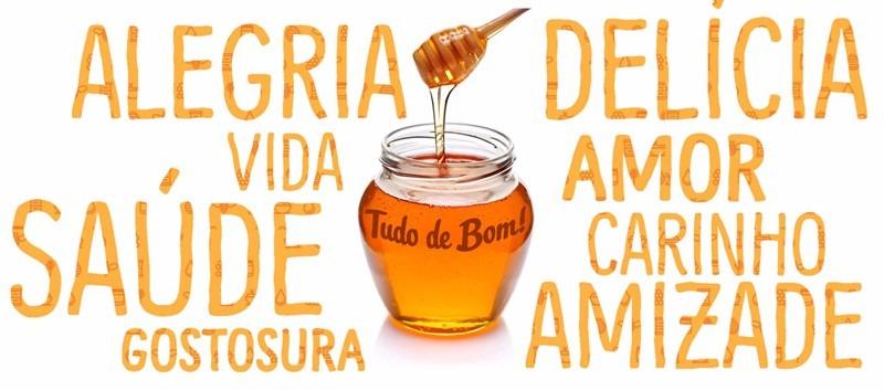 Mel De Abelha Puro Florada Laranjeiras Citromel 300g - R