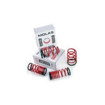 Kit Mola Esportiva Red Coil New Civic