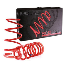 Ford Fiesta 2003/... Molas Esportivas Red Coil Rc-201