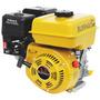 Motor Gasolina Para Barco/ Bote 5,5cv - Part. Manual - 163cc