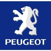 Amortecedor Dianteiro Original Peugeot 206 / 207