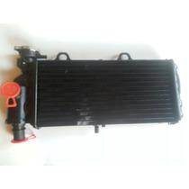 Radiador De Agua P/ Moto Bmw G 650gs - Novo