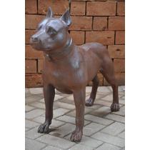 Cachorro Pitbill Terrier - Casa E Jardim - Decoração