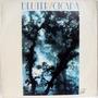 Lp Vinil - Deuter - Cicada - 1982