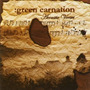 Cd Green Carnation - Acoustic Verses ( Hellion ) 2006