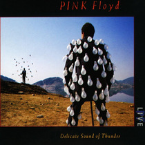 Cd Pink Floyd Delicate Sound Of Thunder [eua] Novo Lacrado