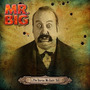 Mr Big-stories We Could Tell Cd Import