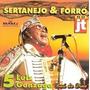 Cd Sertanejo E Forró Jt (raro)
