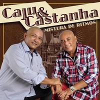 Cd Caju E Castanha Mistura De Ritmos 2015