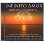 Cd Infinito Amor - Grandes Louvores A Deus - Varios (959800)