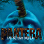 Cd Pantera - Far Beyond Driven / 2 Cd