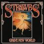 Cd Strawbs Grave New World Remaster 2 Bonus