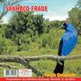 Cd Canto-de Pássaros - Sanhaço Frade - Canto Galopado