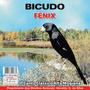 Cd Canto Pássaros - Bicudo - Canto Clássico Alta Mogiana