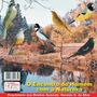 Cd Canto De Pássaros O Encontro Do Homem Com A Natureza