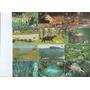Lote - Cartão Telefônico Telebras - Parques E Animais - A2c1