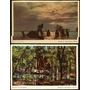 02 Cartão Postal Antigo Manaus Am Rio Negro E Selva